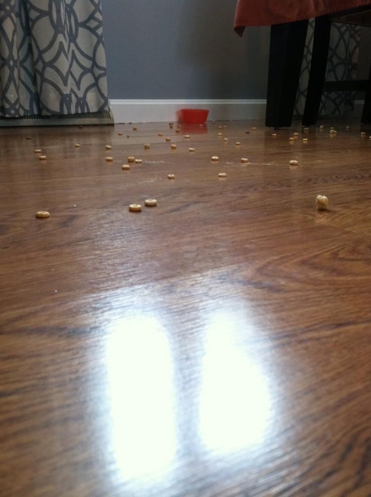 spilled cheerios